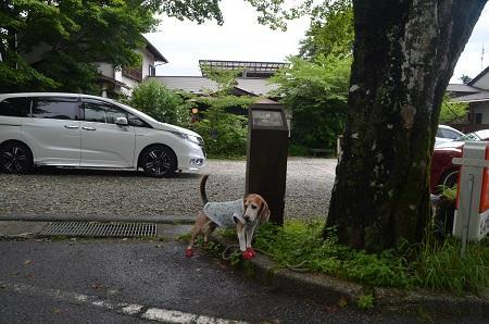 20190822旧・中山道01