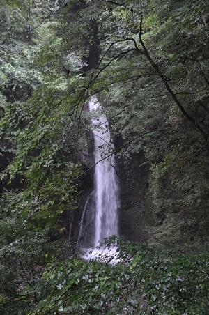 20190822観音山不動の滝08