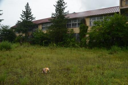 20190822岩島第一小学校10