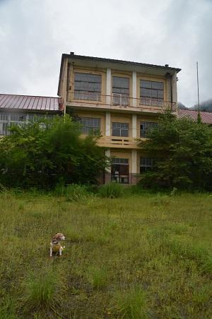 20190822岩島第一小学校09