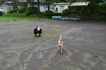 20190822須賀尾分校15