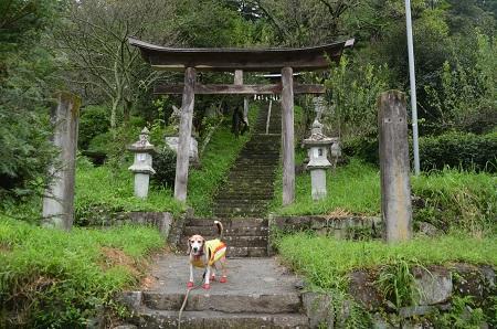 20190822岩島菅原神社04