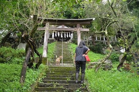 20190822岩島菅原神社07