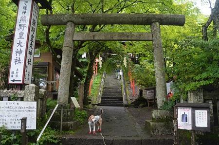 20190823熊野皇大神社09