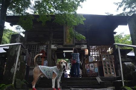 20190823熊野皇大神社14