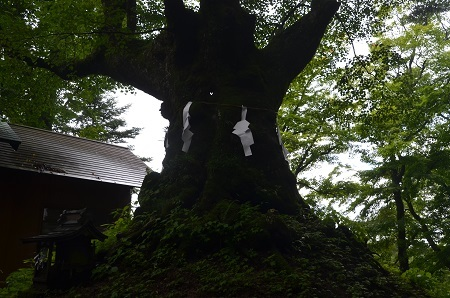 20190823熊野皇大神社25
