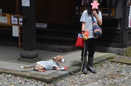 20190823碓氷峠熊野神社13