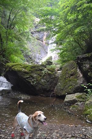 20190823麻苧の滝16