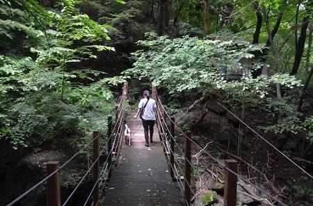20190823麻苧の滝24