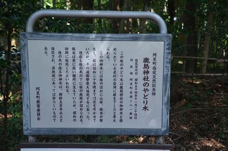 20190826鹿嶋神明宮15