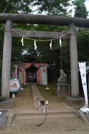 20190904冨里香取神社02