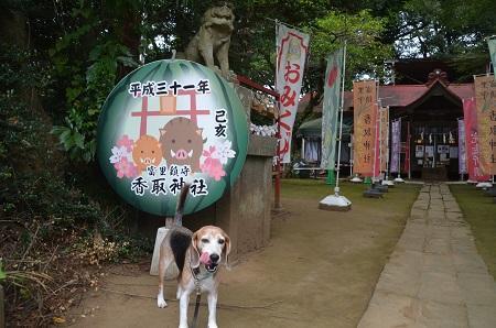 20190904冨里香取神社03