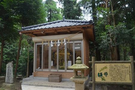 20190904東金日吉神社21