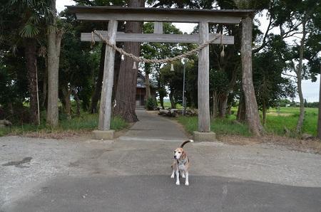 20190904求名熊野神社02