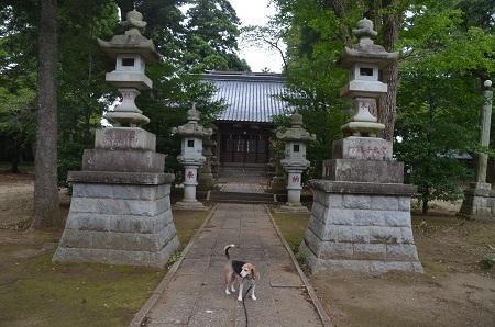 20190904松之郷八坂神社05