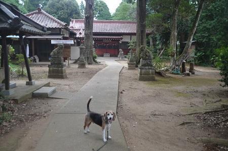 20190904山田貴船神社06