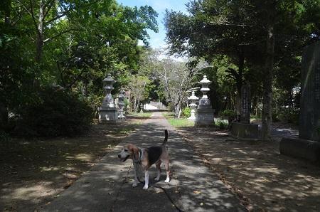 20190908鹿嶋吉田神社04