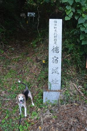 20190915徳宿城址03