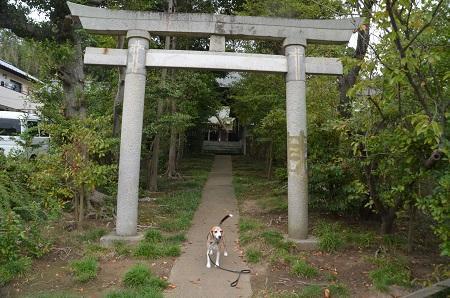 20190921青麻神社02