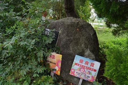 0190921藤沢小学校24