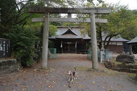 20190921土浦日枝神社11