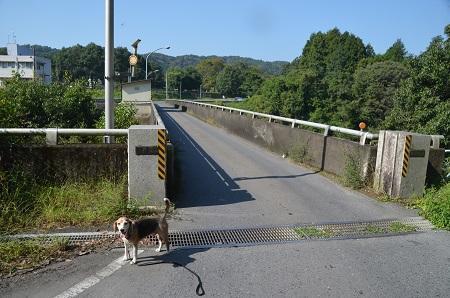 20191002藤井川ダム06