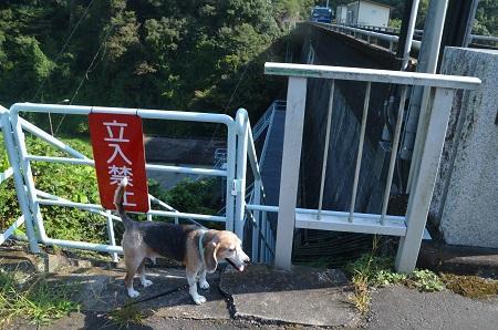 20191002藤井川ダム04