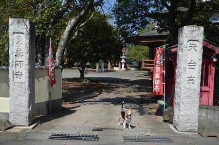 20191002茨城百景 石塚薬師 那珂西城址03