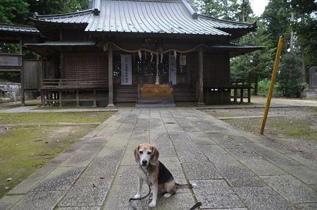 20191007稲田神社08