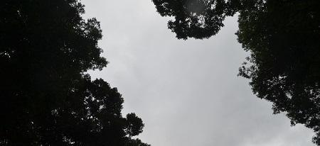 20191007稲田神社26