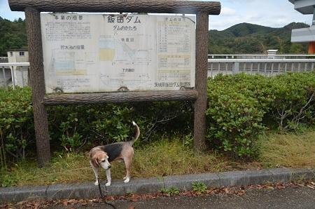 20191007飯田ダム03
