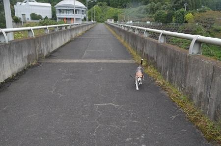 20191007飯田ダム17
