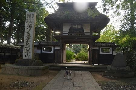 20191007茨城百景 西念寺07