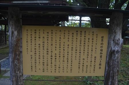 20191007茨城百景 西念寺18
