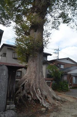 20191007石井神社22