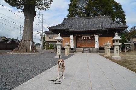 20191007石井神社27