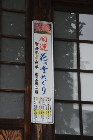 20191007金剛寺13
