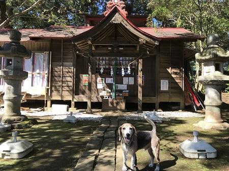 20191013冨里香取神社05