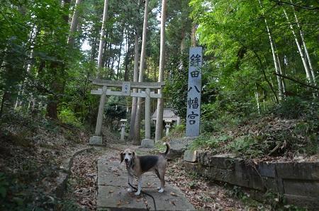 20191007鉾田八幡宮02