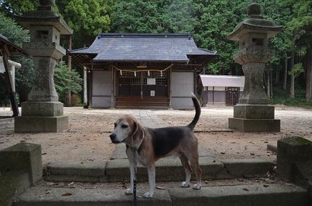 20191007三所神社11