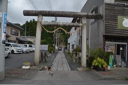 20191007八坂神社01