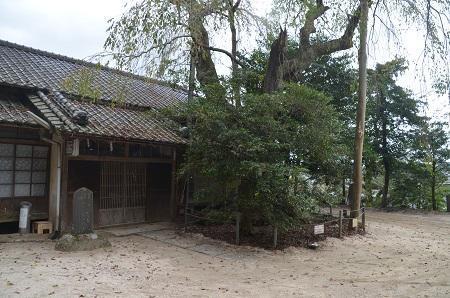 20191007八坂神社22