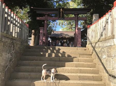 20191013麻賀多神社02