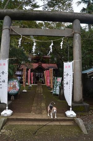 20191015冨里香取神社02