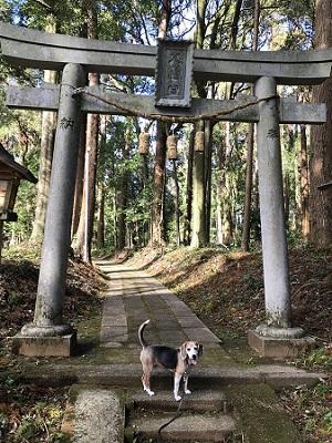 20191013椎崎八幡神社07