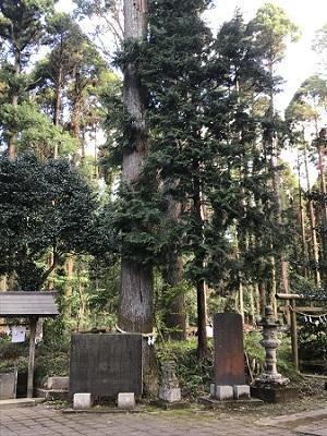 20191013椎崎八幡神社24