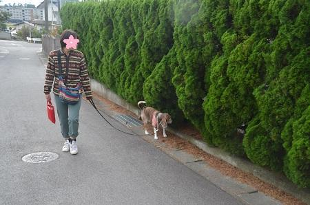 20191024穂見神社04