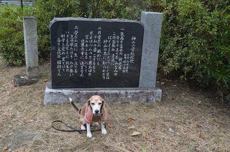 20191024神山小学校05