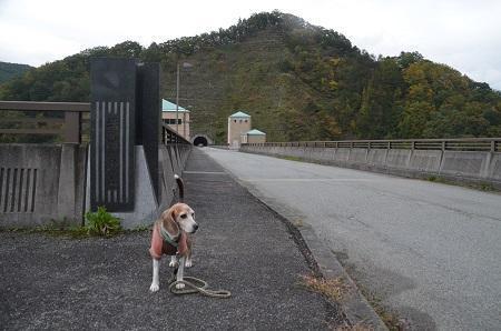 20191024塩川ダム08