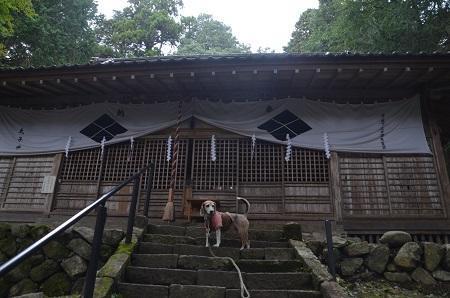 20191024武田八幡宮16